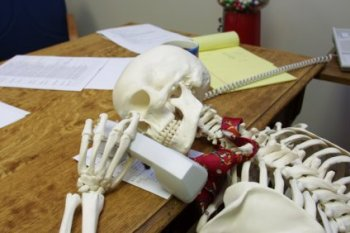 skeleton2-on-hold1.jpg